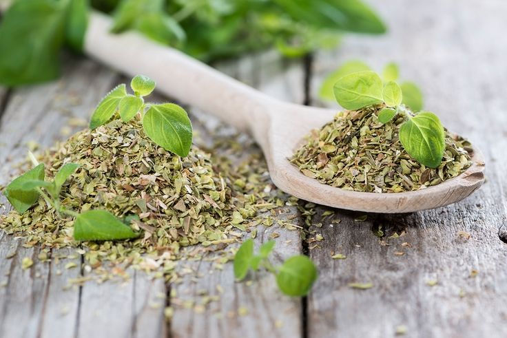 Orégano   Es una hierba popular que mucha gente utiliza simplemente como una especia para mejorar o realzar el sabor de su comida, pero en verdad, esta hierba perenne, con el nombre científico de Origanum vulgare, tiene