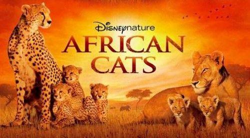 African Cats http://azpitituluak.com/euskaraz/1331716368