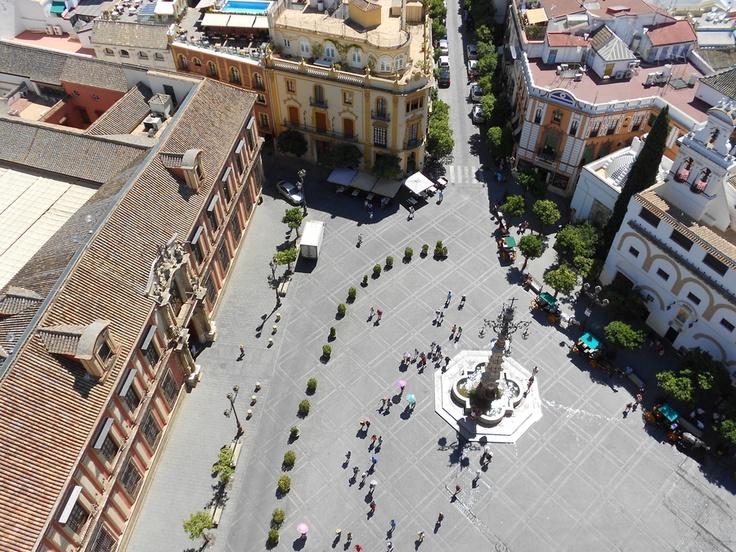 plaza Virgen de los Reyes - #Sevilla