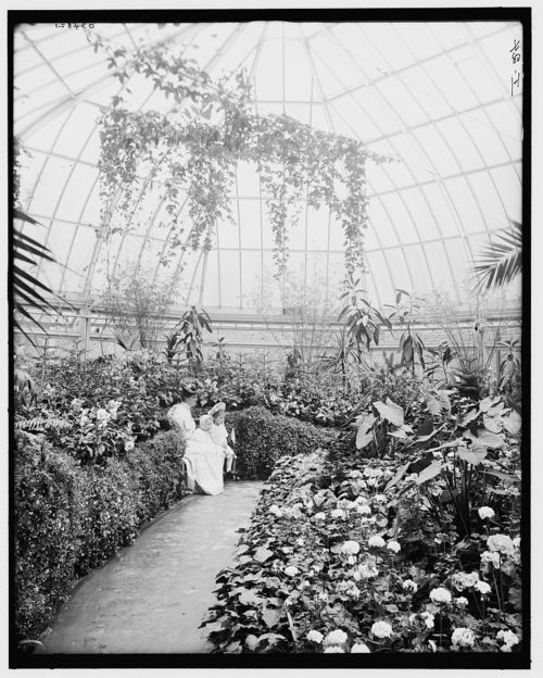 Interior of the Horticulture Building on Belle Isle. A mother and her daughters pose for a picture, taken circa early 1900s.