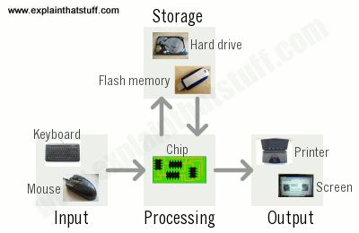 today 3d graphics animation technology computer science essay Need help with computer graphics assignment our computer science tutors offer 24/7 assignment help with a+ grade guaranteed  there are so many applications of computer graphics and.