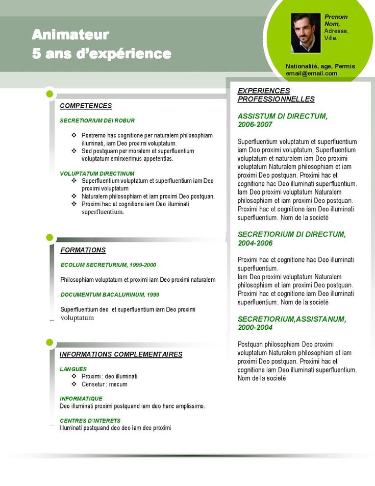 11 best mod u00e8le de cv images on pinterest