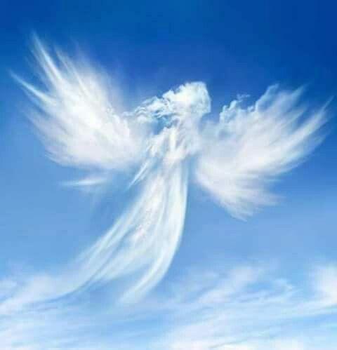 Este es el ángel de la abundancia mandado por Dios para que nos les falte lo necesario; recibanlo con mucha fe. Cuando llegue a usted haga una oración de compromiso: Padre santo que eres desde el principio mi gran defensor te ofresco de hoy en adelante (compromiso) para que en mi hogar, familia no me falte lo necesario, esto te lo ofresco en el amor que tiene tu amado hijo por todos nosotros, amén.