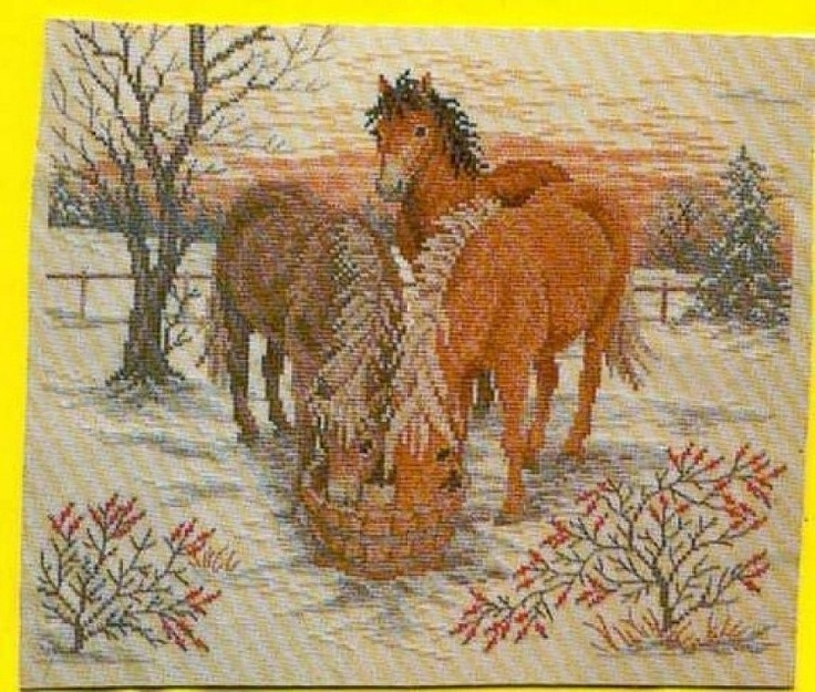 37 Best Images About Horses Cross Stitch On Pinterest