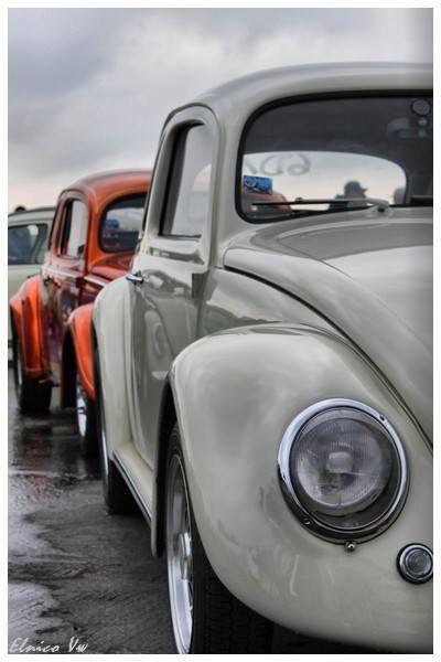 Vw bug's