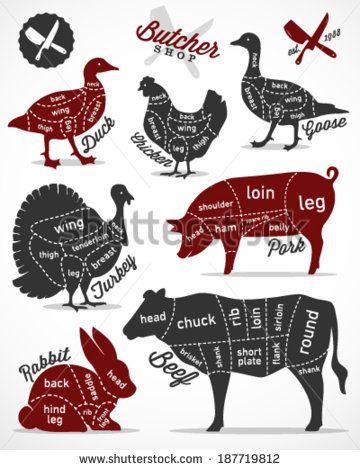 Meat Stock Vectors & Vector Clip Art   Shutterstock