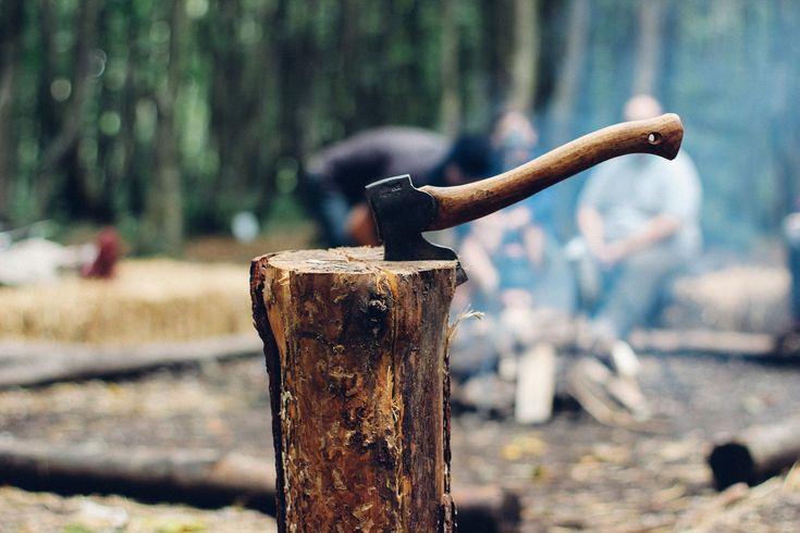 Axe, Timber, Wood, Tool, Tree, Lumberjack, Equipment