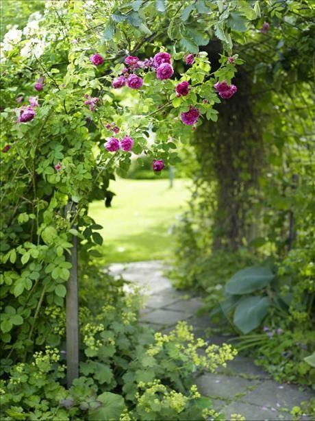 #especially #inspiring #romantic #outdoor #walkway #