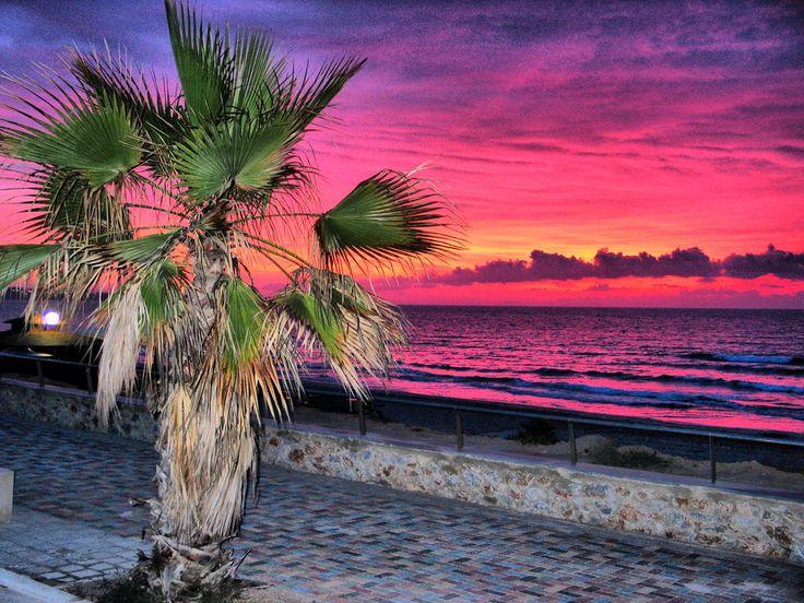 Playa Mil Palmeras-Torre de la Horadada