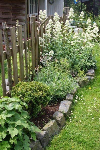 Im Garten kann man den Pflanzen beim wuchern wach…