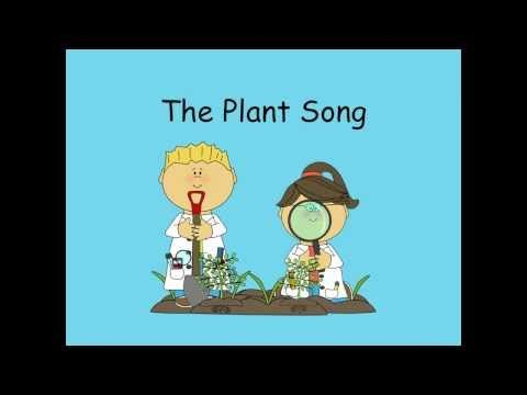 The Plant Song - YouTube. It teaches students the parts of the plant and the life cycle of a plant.