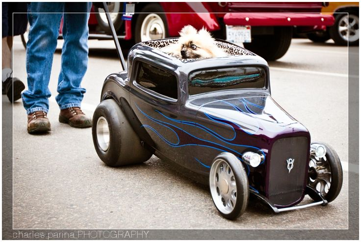 Hot Dogg Cars For Sale