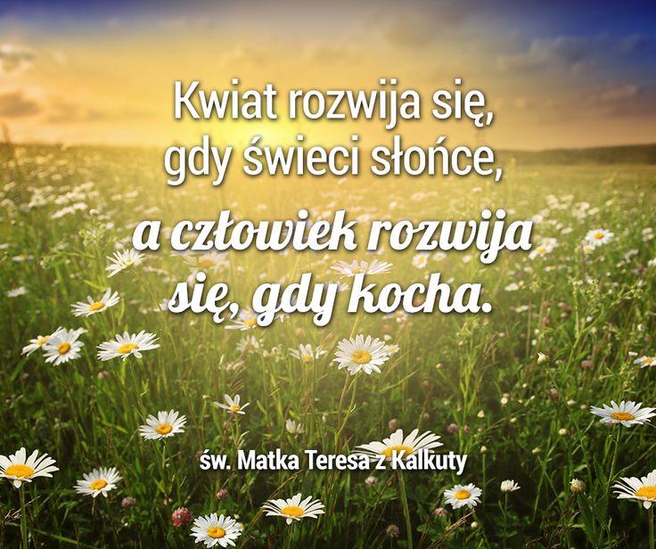 A czego Tobie potrzeba, aby się rozwijać? :)  #człowiek #miłość #sentencje #cytaty