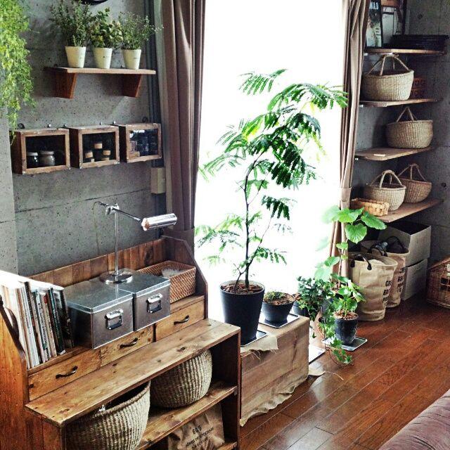 いなざうるす屋さん/りんご箱/植物達/無印良品/DIY/かご…などのインテリア実例 - 2014-07-06 05:22:27   RoomClip(ルームクリップ)