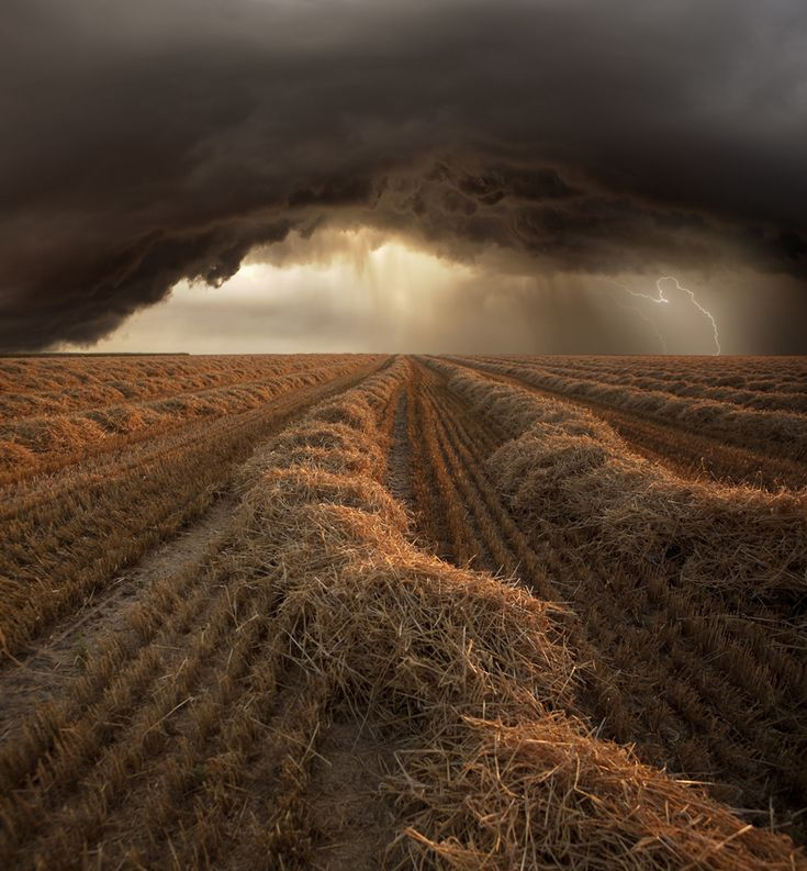 Untitled by Franz Schumacher;Summer storm at harvest time in Strohgaeu Baden-Wuerttemberg, Germany