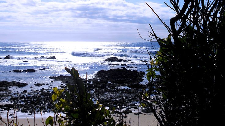 Port Macquarie: looking across the fast-eroding rock platform at Shelly Beach toward the morning sun