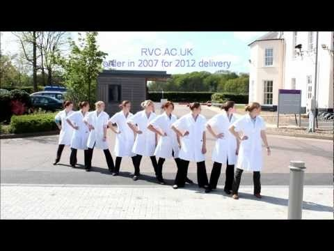 Royal Veterinary College final year students mimic the Next advert from autumn 2011