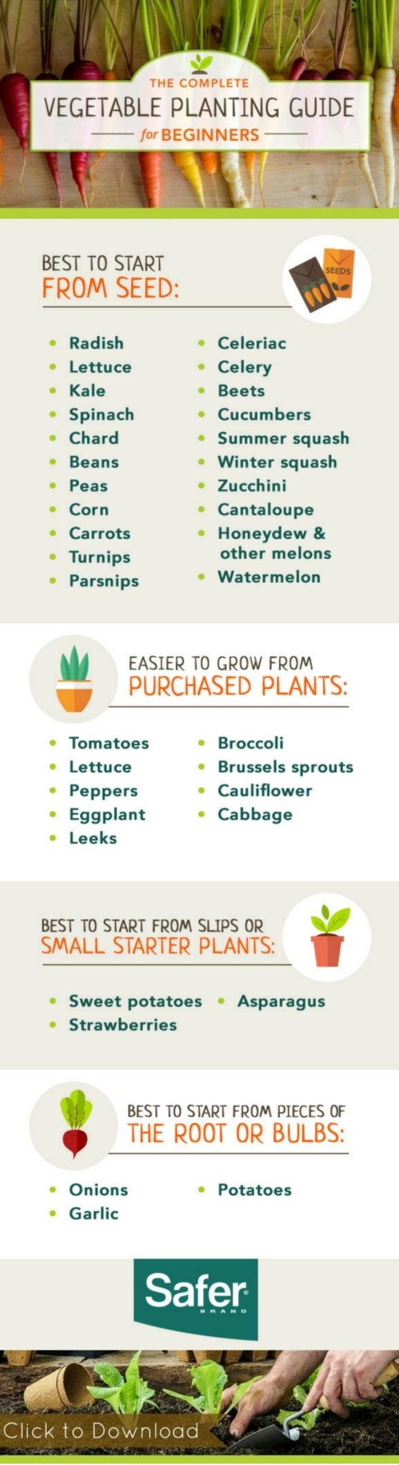 Tips - top tips on what you should use to start off growing different types of vegetables | #growyourown #vegetables #beginnersguide