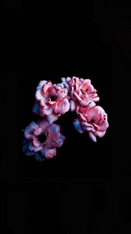 خلفيات للموبايل 2019 خلفيات حلوة بجودة Hd Tecnologis Painting Wallpaper Flower Wallpaper Android Wallpaper