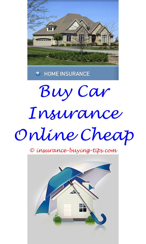 what percentage buy 100 300 insurance - when is best time to buy long term care insurance.guide to buying life insurance do i need to have insurance to buy a car buy holiday insurance 6324579556