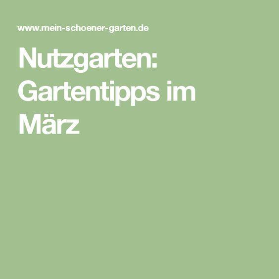 101 best gemüsegarten images on Pinterest Balcony gardening - günstige kleine küchen