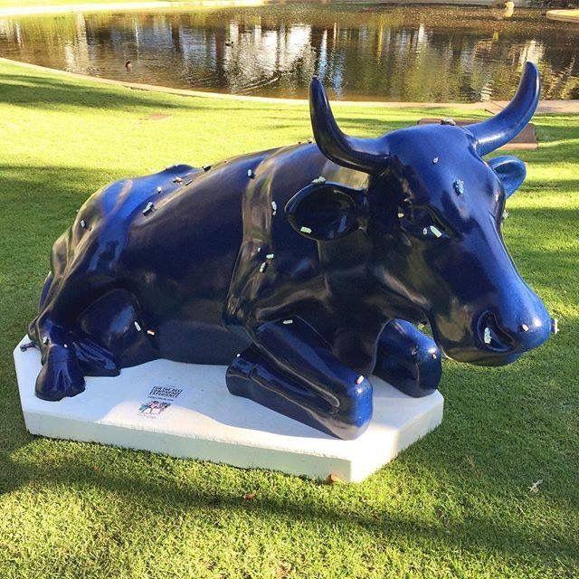 Cowparade 2016, Perth
