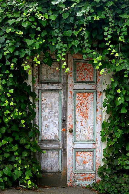 door w/vines. Secret garden anyone?