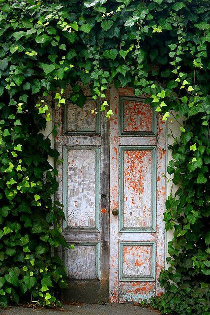door w/vines. Secret garden anyone?