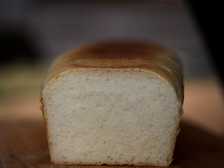 Paine+toast toast+bread