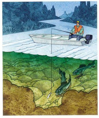 5 top jig-fishing tactics for walleye