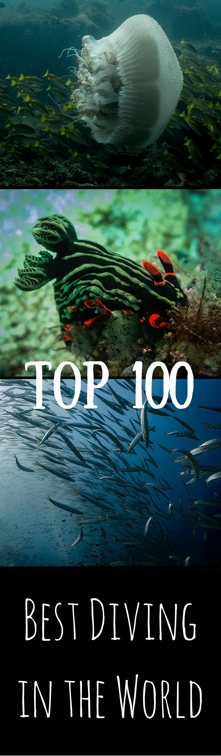 Here is 100 sites with the best diving in the world. As of right now it is my goal to dive every one of them! Want the best diving? This is where to go!