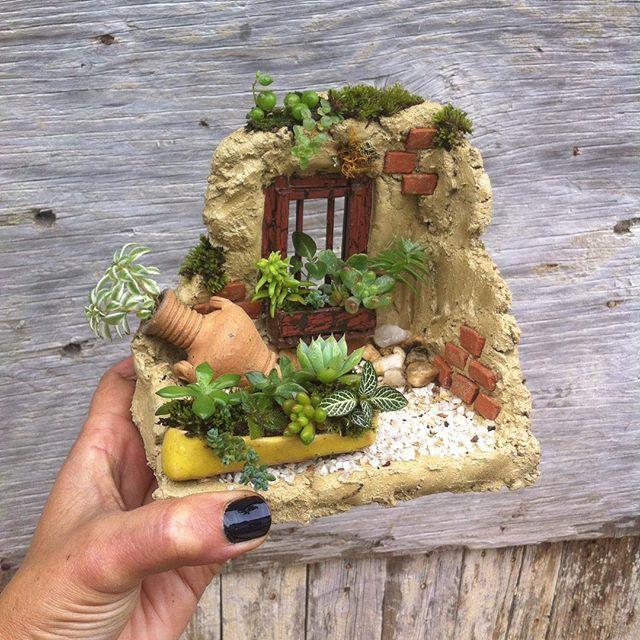 Feliz martes para todos!! Por acá les dejo esta fachadita en ruinas estilo #rustico con #pottery amarillo de @bg.arte_ceramico . Esta pieza tiene #suculentas , #fitonia y #begonia ... Vendido✔️  .  .  .  #aromataplantas #pueblo #casa #casaenruinas #decoracion #plantas #plants #mini #minijardin #teamsaperes #minimalism #minimal #hechoamano #hechoenvenezuela #talentovenezolano #madera #arcilla #barro #garden #fachada #ruinacolonial