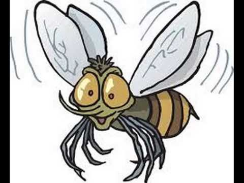 Komáři se ženili písničky pro děti