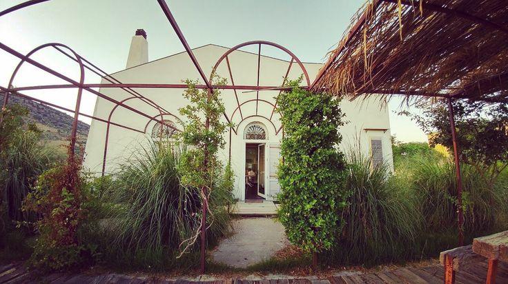 Casa Cerasuola, Bordone biofarm, alia Palermo