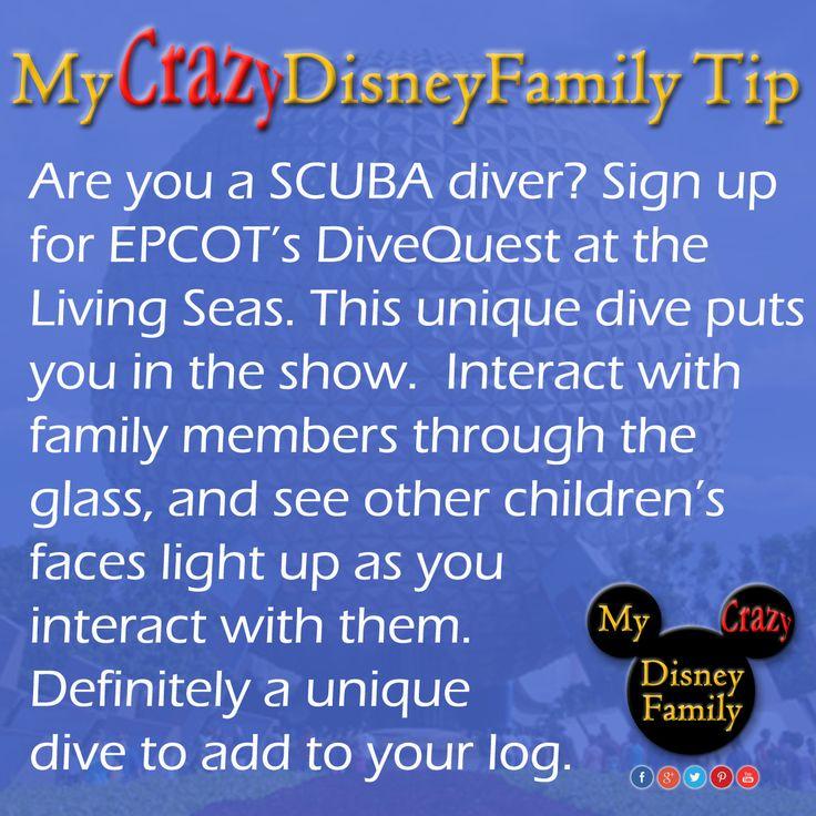 Scuba diving at Walt Disney World? Sure why not!   https://disneyworld.disney.go.com/events-tours/epcot/epcot-divequest/  #MyCrazyDisneyFamily #Disney #disneytip  #disneytips  #DisneyWorld #MickeyMouse  #wdw #magickingdom #epcot #animalkingdom #hollywoodstudios #waltdisneyworld #Disney #Mickey #Crazy #tip #WDWTip #WDWTips  #scuba #Dive #LivingSeas #DiveQuest #UniqueDive
