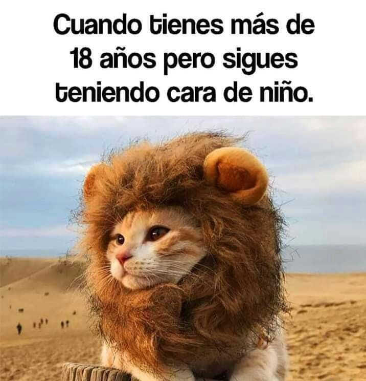 Memeslandia Funnylatinovideos Funny Spanish Memes New Memes Funny Memes