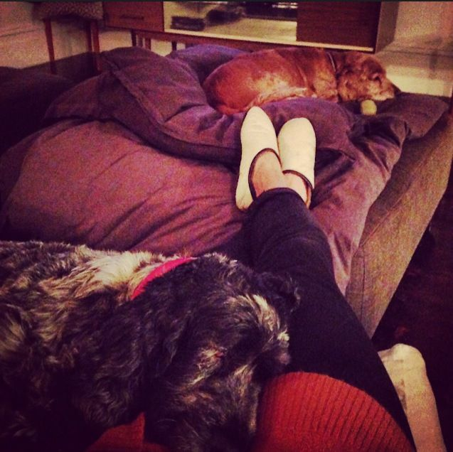 Day 83 - when it's cold outside and you're watching Seinfeld with your pups...