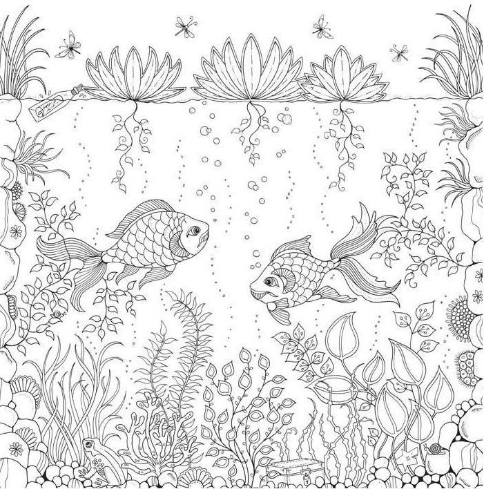 103 Best Colouring Pages For Adults Images On Pinterest