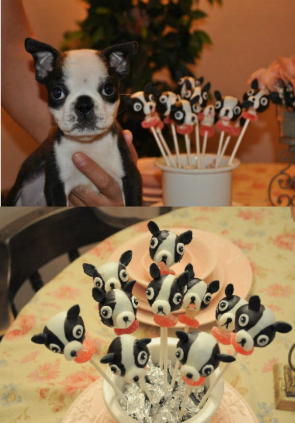 HURLEY's turning ONE!!! Next Saturday!!! boston terrier cake pops! @Adam M Ricketts