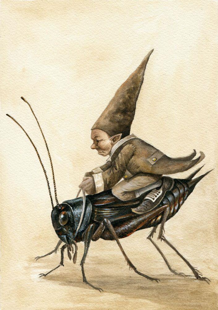 Cricket Racer by Markelli on DeviantArt