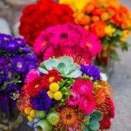 casamento-arco-iris-ceub (38)