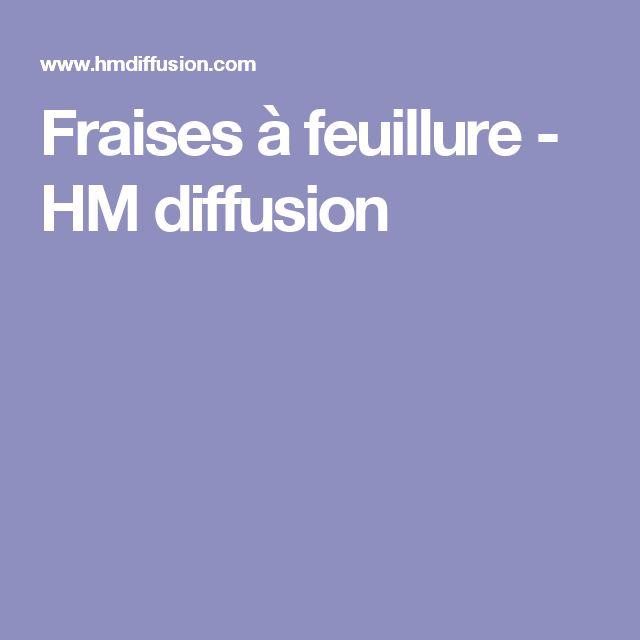 Fraises à feuillure - HM diffusion