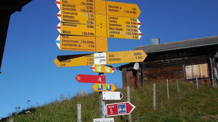 Pass no 11: Hahnenmoos (Via Alpina Switzerland)