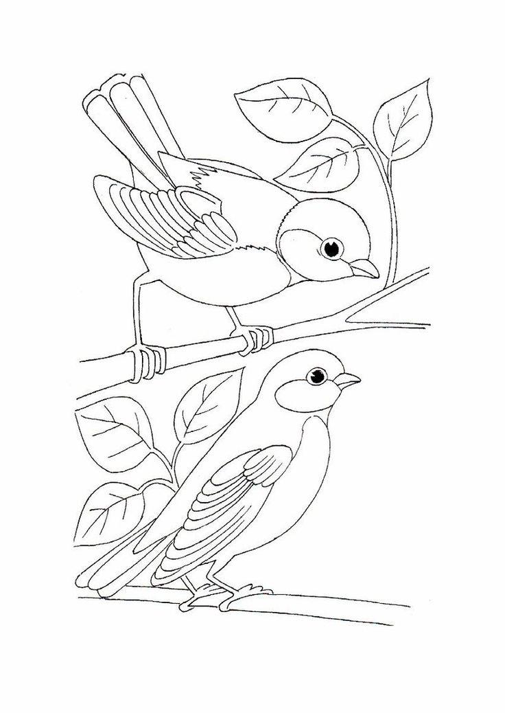 vögel zum ausdrucken   ausmalbilder, vogel malvorlagen