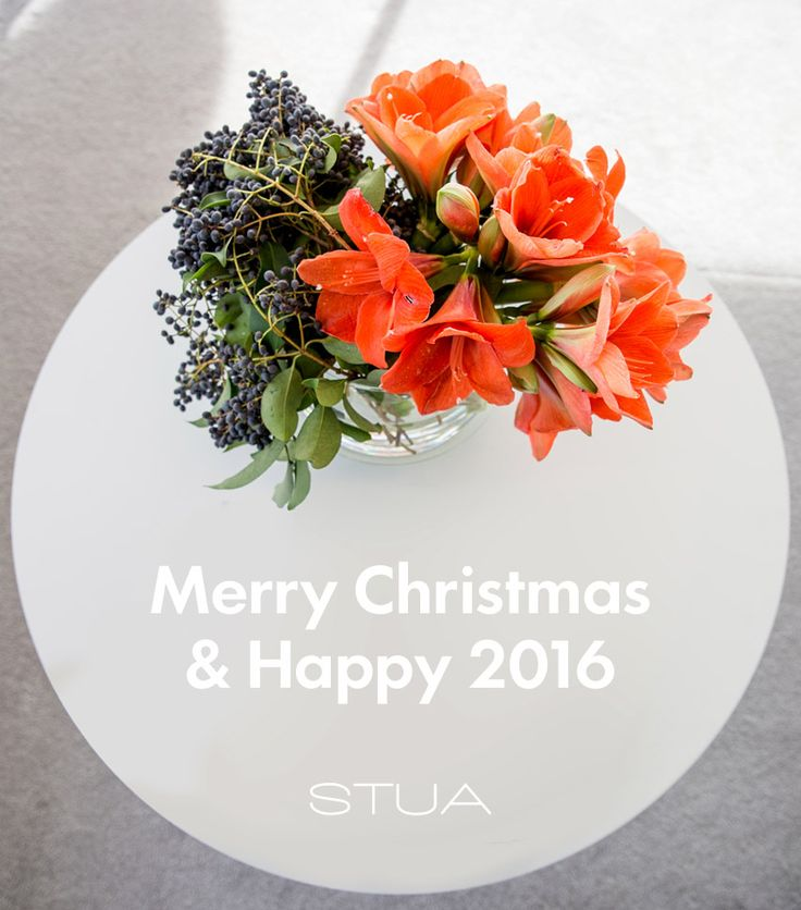 Merry Christmas & Happy 2016 from all the STUA team!