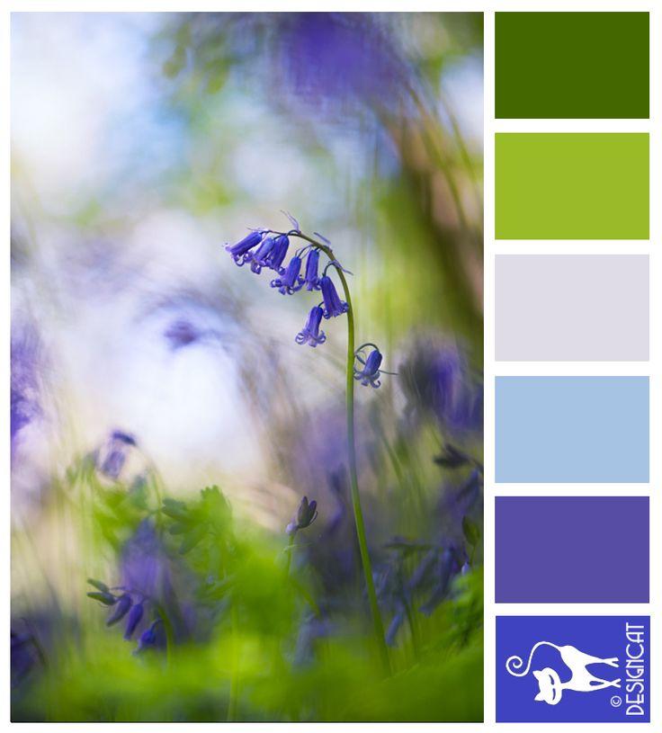 243 best images about Designcat - Colour Pallets on