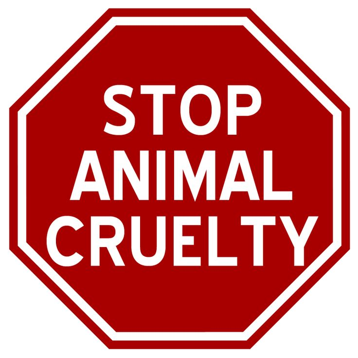 Animal Abuse Quotes By Famous People: 434 Best S T O P Images On Pinterest