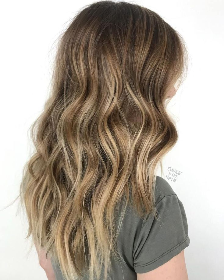 Chestnut Hair With Muted Blonde Highlights