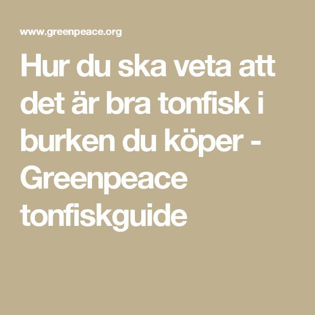 Hur du ska veta att det är bra tonfisk i burken du köper - Greenpeace tonfiskguide