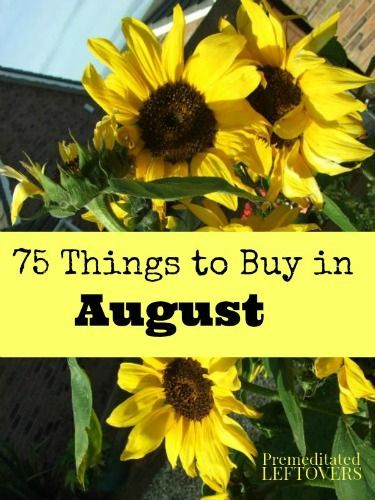 What to Buy in August - A list of items that will be on sale or marked down for clearance in August so you can save money on the items you need.